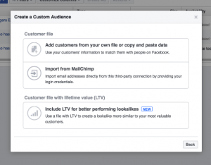 A screenshot of facebook ads custom audience options